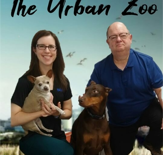The Urban Zoo